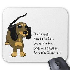Definition of a Dachshund: Heart of a lion, Brain of a fox, Body of a sausage, Bark (& attitude) of a Doberman!