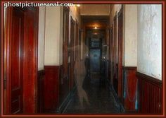 Image Search Results for real spooky ghost Scary Ghost Pictures, Ghost Photos, Ghost Sightings, Ghost Hauntings, Paranormal Photos, Real Ghosts, Haunted Places, Abandoned Places, Ghost Stories