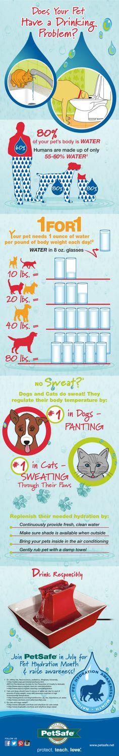 Pet Hydration Month