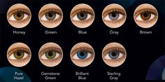Air Optix Colors 2 pack contacts $26.99. No Taxes, from Canada