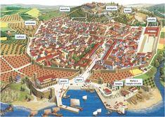 Elements de les POLIS: Acròpli, Stoa, carrers amb columnates, Gimnàs, teatre