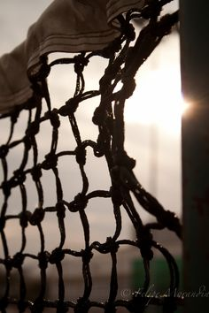 Can you guess what sport's net this is?   http://www.parknpool.com/sports/tennis.php