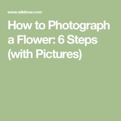 How to Photograph a Flower: 6 Steps (with Pictures)