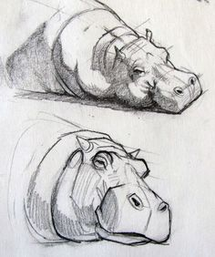 10 tips for sketching moving subjects drawingtips drawings illustrations moving sketching subjects tips artwork von cat pixiv id 58934746 pixiv net s lieblich a Animal Sketches, Art Drawings Sketches, Animal Drawings, Cool Drawings, Sketch Art, Pencil Drawings, Bird Sketch, Inspiration Art, Art Inspo