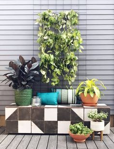 Make an Easy Green Vertical Garden For less than $50 | This vertical garden is good for indoor plants as well as outdoor spaces that need a quick upgrade.
