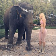 Under fire:Fans have slammed Iggy Azalea for animal cruelty after she posted a photo of herself posing with an elephant in a rapper French Montana's backyard on social media