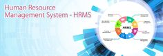 An effective human resources management system is essential for the success of your company. Check out here some important tips on how HR software solutions can facilitate the business's operation growth with a competitive edge