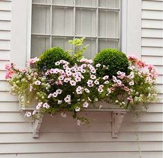 window box with boxwood, petunias, geranium