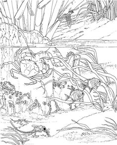 Seascape - Ocean Coloring Page - lots of coloring pages on this site