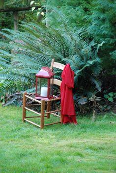 Chapeuzinho Vermelho vai à Floresta Festejar
