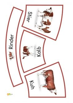 1-Kindergarten-KiGaPortal-Bauernhof-Tiere-Tierkinder-Tierbabies-Tierfamilien-Kuehe-Rinder-Katzen-Schafe-Ziegen-Pferde-Hunde-Montessori-Bodenbild