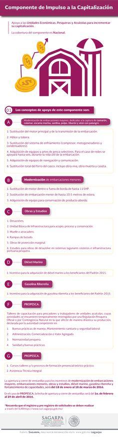 Componente de Impulso a la Capitalización. SAGARPA SAGARPAMX