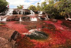 A Pink Lake and Bleeding Glacier? Here Are 12 of the World's Most Jaw-Dropping Natural Wonders. Cano Cristales, La Macarena, Colombia