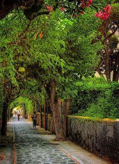 Anacapri: The Isle of Capri, Italy >> Scopri le Offerte!