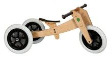 Wishbone bike  3-in-1. Start at 12 months on three wheels.  Learn to balance at age 2 or 3.  Flip the wishbone frame to fit 4 to 5 year olds.