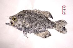 рыба рисунок - Поиск в Google