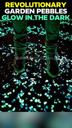 night home Glow-In The Dark Pebbles are an eco-friendly stone replacement to give your Home and Garden a unique look like no other. Night Stones require absolutely no maintenance, no batteries or work other than placing them where ever you like! Lawn And Garden, Home And Garden, Garden Path, Home Landscaping, Landscape Designs, Useful Life Hacks, Garden Projects, Garden Crafts, Diy Projects