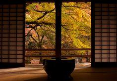 光明禅寺 koumyouzenji temple in Fukuoka,Japan
