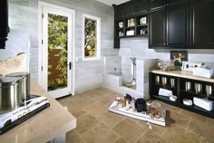 Dog washing station idea for your home