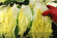 김장김치 실패없이 담그는법, 김장김치10포기양념 Korean Food, Cabbage, Vegetables, Korean Cuisine, Cabbages, Vegetable Recipes, Brussels Sprouts, Veggies, Sprouts