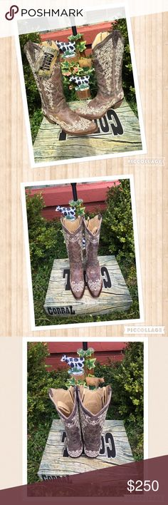 ✨NWT Corral Vintage Boots✨ Beautiful Beige/Brown with a lovely cream embroidery.  A true size 7 in my opinion.  These would look great at a fall wedding or a night on the night.  They are sophisticated and gorgeous at the same time!  Make an offer!!! Corral Vintage Shoes Heeled Boots