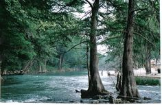 Guadelupe River in historic Gruene, TX; popular rafting river, watch out for cotton mouth snakes! New Braunfels Texas, Guadalupe River, Only In Texas, Float Trip, Texas Hill Country, Texas Travel, Stars At Night, Rafting, Vacation Spots