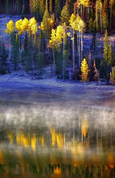 'Fall Fog' by Mountain Man JC13, via Flickr. Taken in western Utah at Navajo Lake, southeast of Cedar Breaks