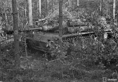 An Sturmgeschütz III Ausf. G in a very disguised position at Vuosalmi Bridge Headquarters, Finland. Date: Photographer: Ensign V. Panzer Iii, World History, World War Ii, World Conflicts, Tiger Tank, Tank Destroyer, Military Diorama, Ww2 Tanks, Armored Vehicles