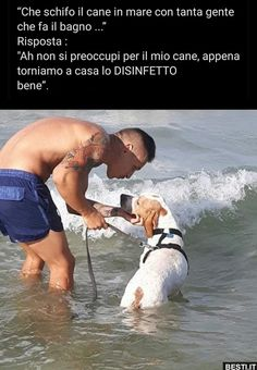 😁😁😁😀😀😀😀 Non si preoccupi Love Pet, I Love Dogs, Cane Corso, Dogs Of The World, Animal Quotes, Tie, Funny Posts, Funny Cute, Funny Images