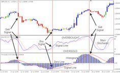 Forex Cash Stochastic And Macd Forex Trading Learn Forex