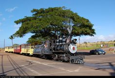 "The narrow gauge Lahaina Kaanapali and Pacific Railroad, otherwise known as the ""Sugar Cane Train"", is shown here departing the Puukolii Station."