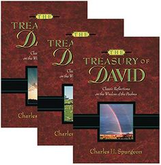 The Treasury of David (3 Volumes Set) by C. H. Spurgeon http://www.amazon.com/dp/0917006259/ref=cm_sw_r_pi_dp_aGujvb0S4WDBC