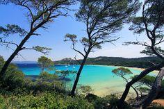 Le littoral varois abrite parmi les plus belles plages d'Europe. Certaines sont devenues mythiques grâce à des scènes de film, d'autres sont restées sauvages et préservées. Des plages de galets ou de sable fin, pour une baignade en famille ou faire la sieste à l'ombre d'un pin parasol.Notre sélection de plagessur le littoral varois vous emmèneà Toulon, Bandol, St-Tropez, l'île des Embiez, Porquerolles et vous réserve quelques surprises !