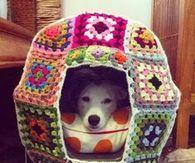 Crochet Kennel