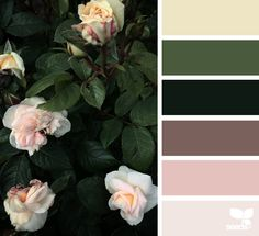 { flora hues } - https://www.design-seeds.com/in-nature/flora/flora-hues-50