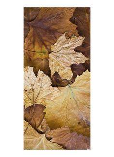 Herbstlaub Motivdruck Papier