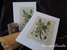 tavola botanica Cannabis stampa su carta di canapa CanapaCruda notebook 15x21 cm in tessuto di canapa