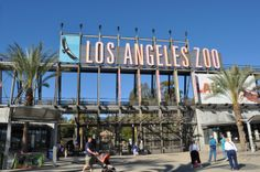 An Insiders Guide to the LA ZOO