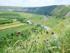 Tolle Ausblicke auf die Landschaft Moldawiens #taipantouristik #moldau #reisen #landschaft #natur #soschön #immereinereisewert #instagood #rundreise #draussen #wanderlust Vineyard, Wanderlust, Instagram, Outdoor, Moldova, Round Trip, Landscape, Amazing, Nature