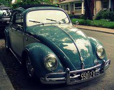 Slug Bug ~ Beetle Bug ~ Love Bug