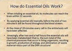 How essential oils work (from Essential Oil Me)- this is why you should use a little bit of oil, and often, rather than a lot of oil all at one time