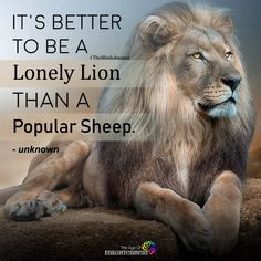 It's better to be a lonely lion than a popular sheep Leo Quotes, Wise Quotes, Attitude Quotes, Faith Quotes, Great Quotes, Words Quotes, Motivational Quotes, Inspirational Quotes, Sayings