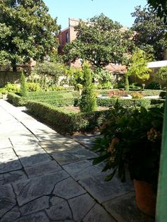 Gardening on pinterest italian garden fence and hedges for Landscaping rocks savannah ga