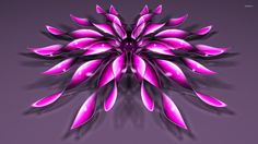 Pink flowers with a purple core wallpaper