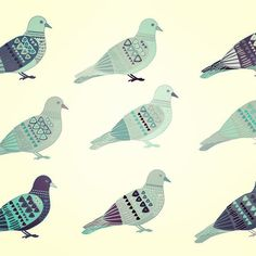 These guys get a bad wrap sometimes, but I think they have their own little charm and beauty #pigeons #illustration #illustrationoftheday #instaart #design #art #instagood #art_we_inspire #surfacepattern #color #colour #patterndesign #pattern #drawing #birds #picame