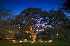 Another incredible dining experience at Marataba Lodge, within South Africa's Limpopo Province, within the Marakele Reserve which is sanctuary to rhino, elephant, hyena, cheetah, lion and the rare wild dog (or African painted dog). This is a beautiful lodge and is the perfect retreat for honeymooners.
