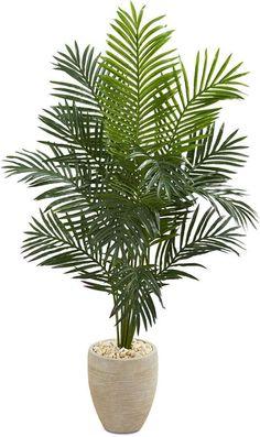 Fake Plants Decor, Faux Plants, Plant Decor, Indoor Palm Trees, Indoor Palms, Palm Plant, Trees To Plant, Tree Photoshop, Artificial Tree