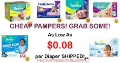 HOT PAMPERS DEALS! As low as $0.08 per diaper shipped! Baby Dry, Swaddlers, Cruisers, Sensitive Swaddlers and more!  GO NOW for CHEAP DIAPERS!  Click the link below to get all of the details ► http://www.thecouponingcouple.com/cheap-diapers-pampers/ #Coupons #Couponing #CouponCommunity  Visit us at http://www.thecouponingcouple.com for more great posts!