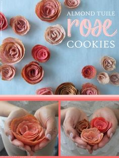 RECIPE / TUTORIAL: How to Make Almond Tuile Cookie Roses