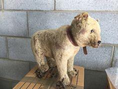 STEIFF Original Pull-a-long Bear C1905-1909 by specialbys on Etsy